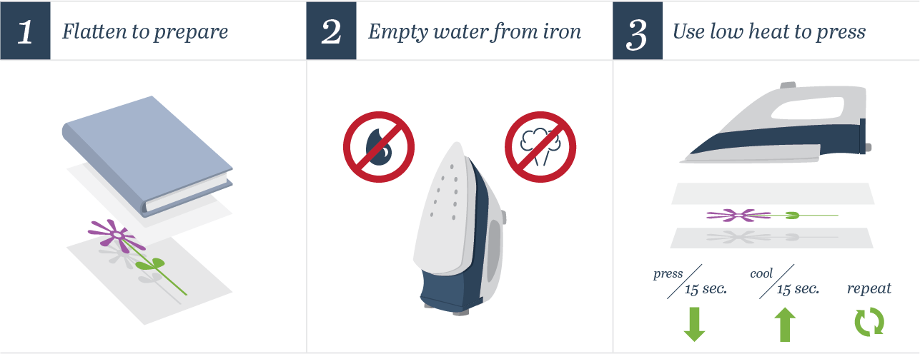 how to press flowers using an iron