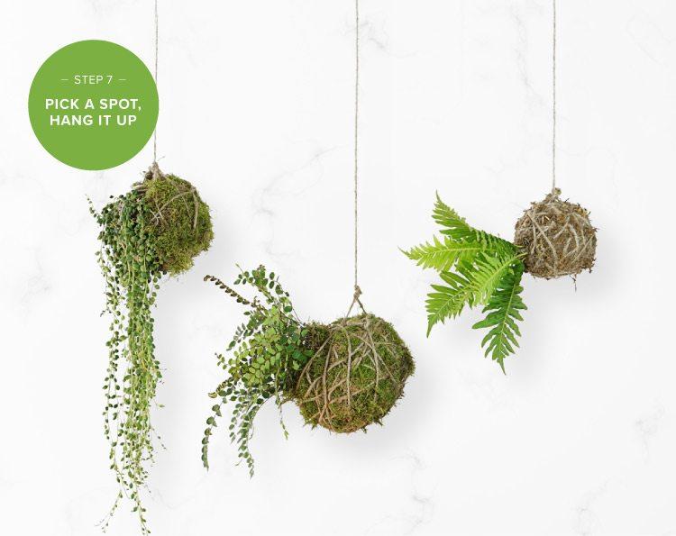 how to make a kokedama string garden step 7