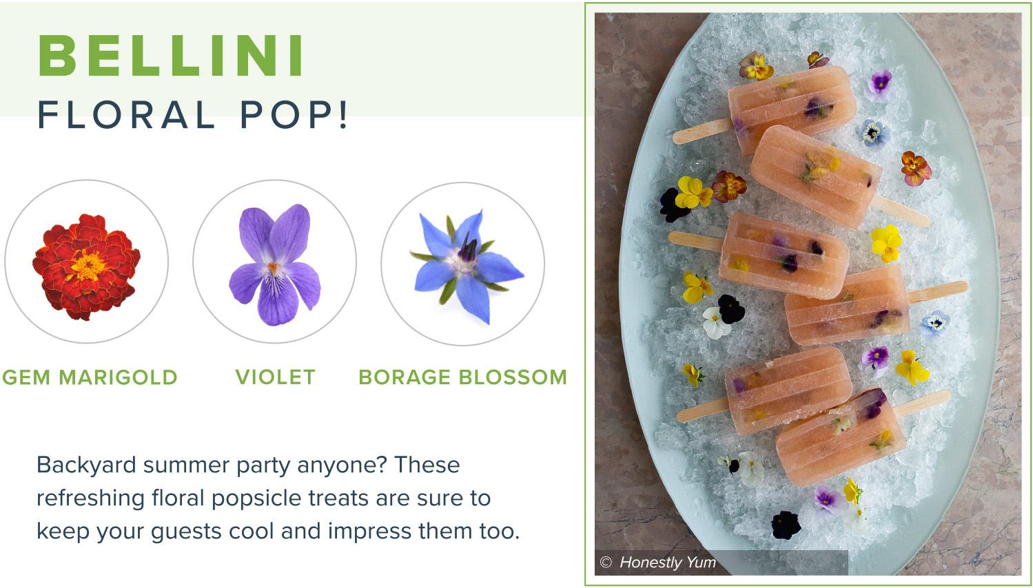 edible flowers bellini pop