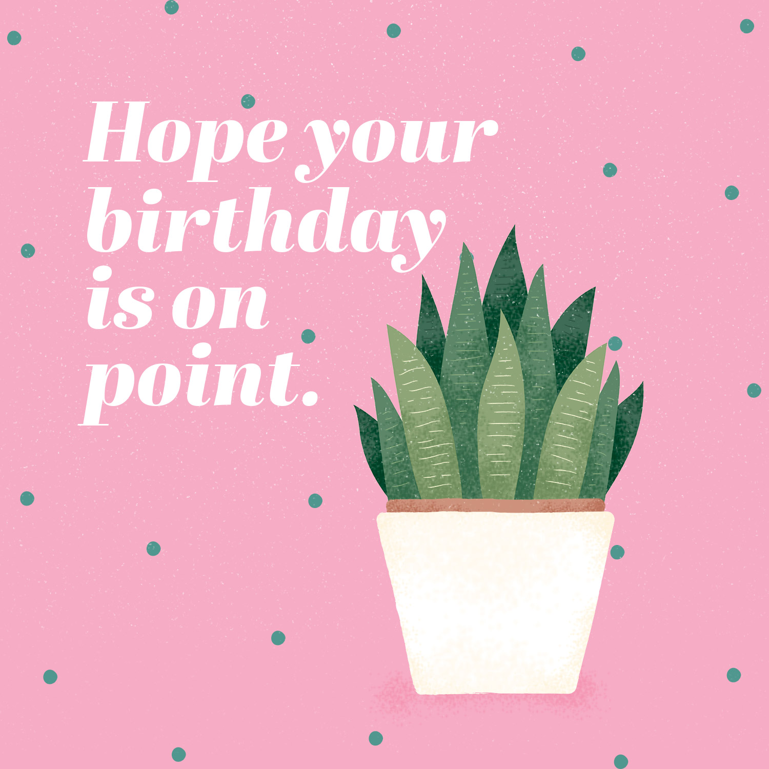 cactus puns hope your birthday is on point