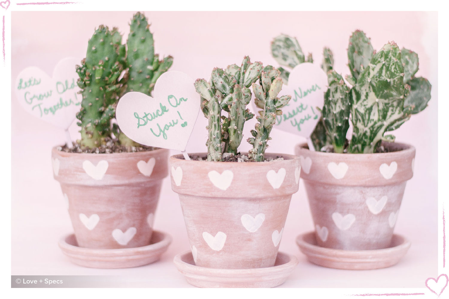 how to surprise your boyfriend heart potted plant