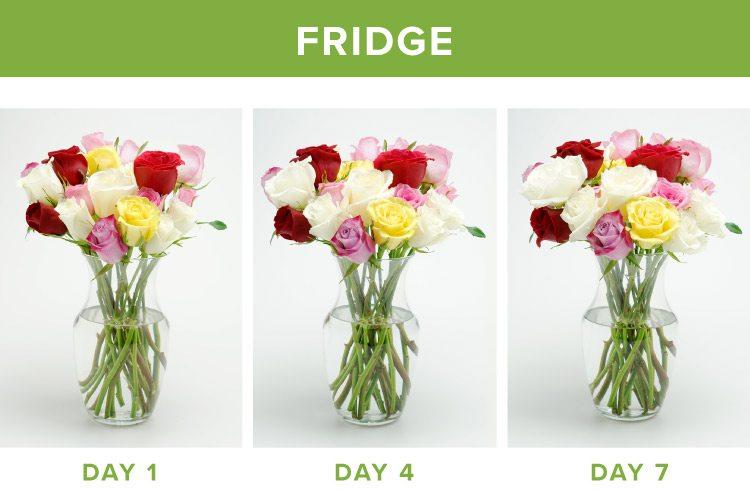 how to make flowers last longer fridge