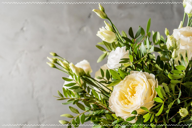 white flowers on grey background