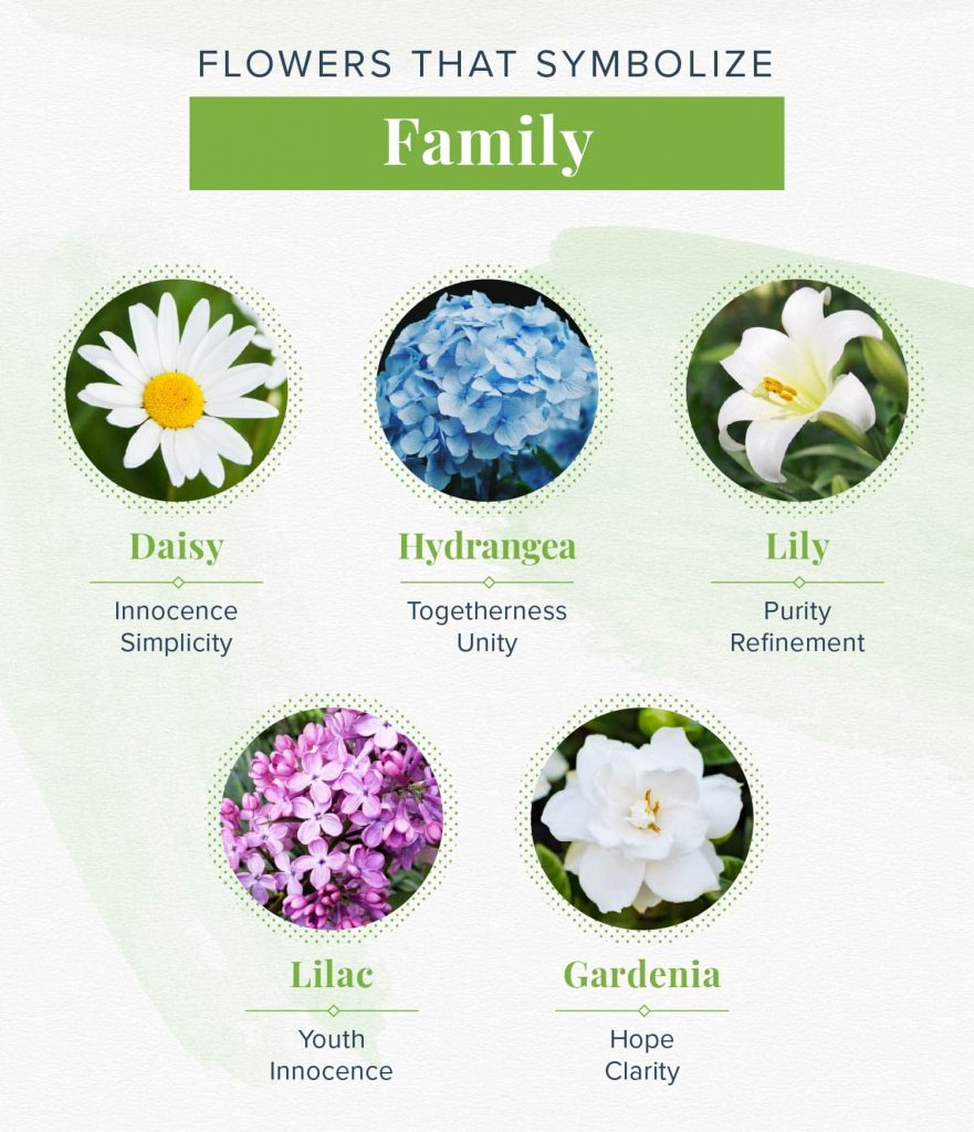 flowers that symbolize family