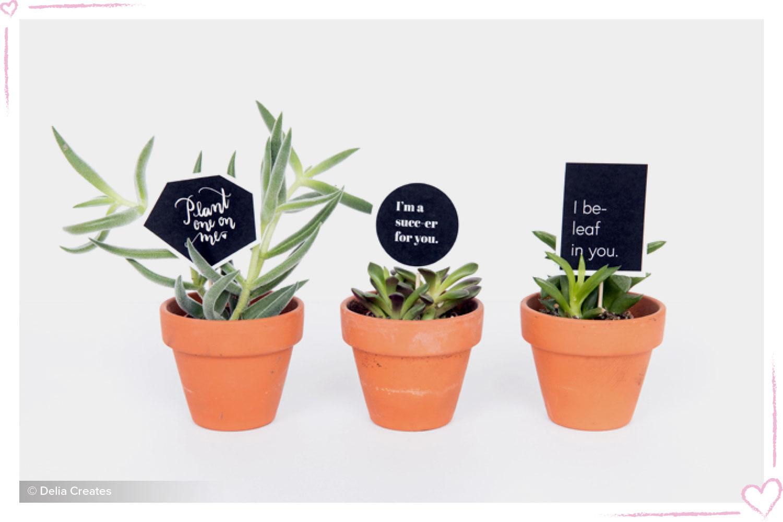 how to surprise your boyfriend plant printables