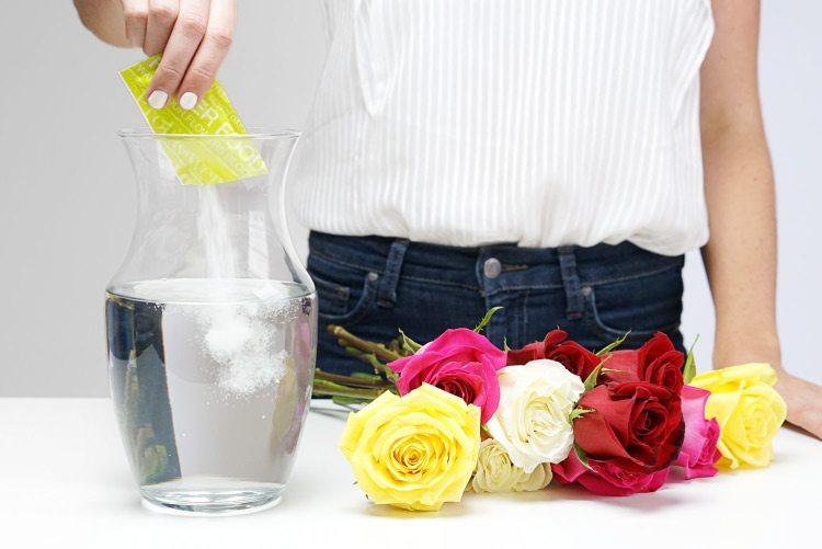 flower care tips