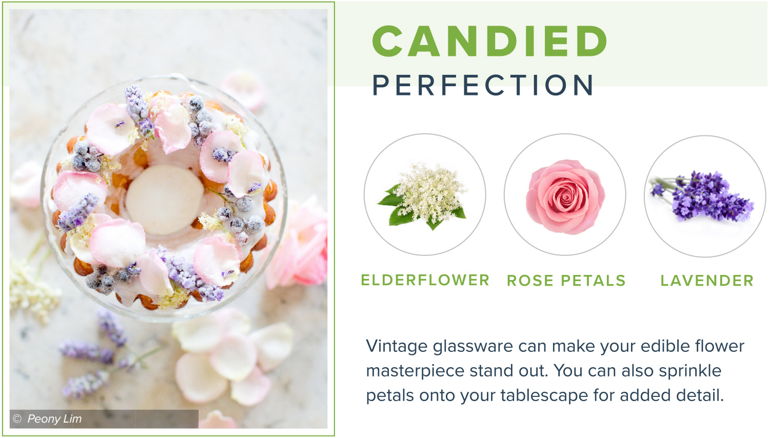 edible flowers candied perfection