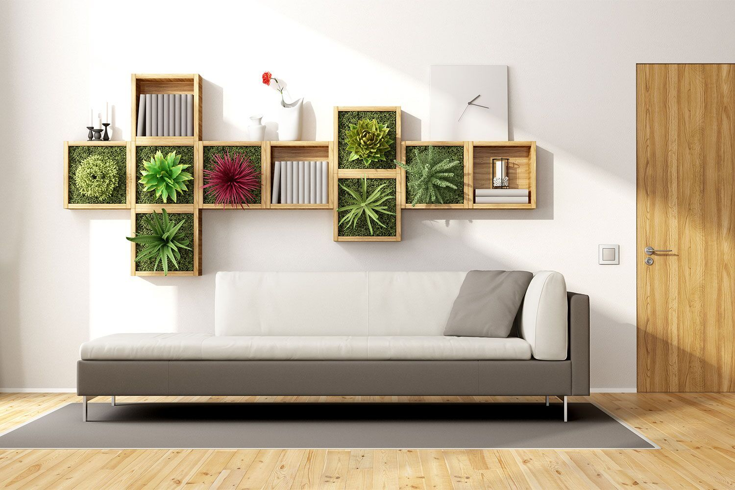 couch with wall planter hanging above