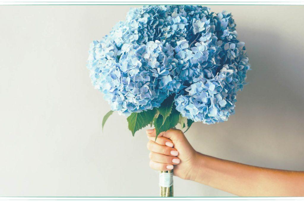 woman holding blue hydrangea bouquet