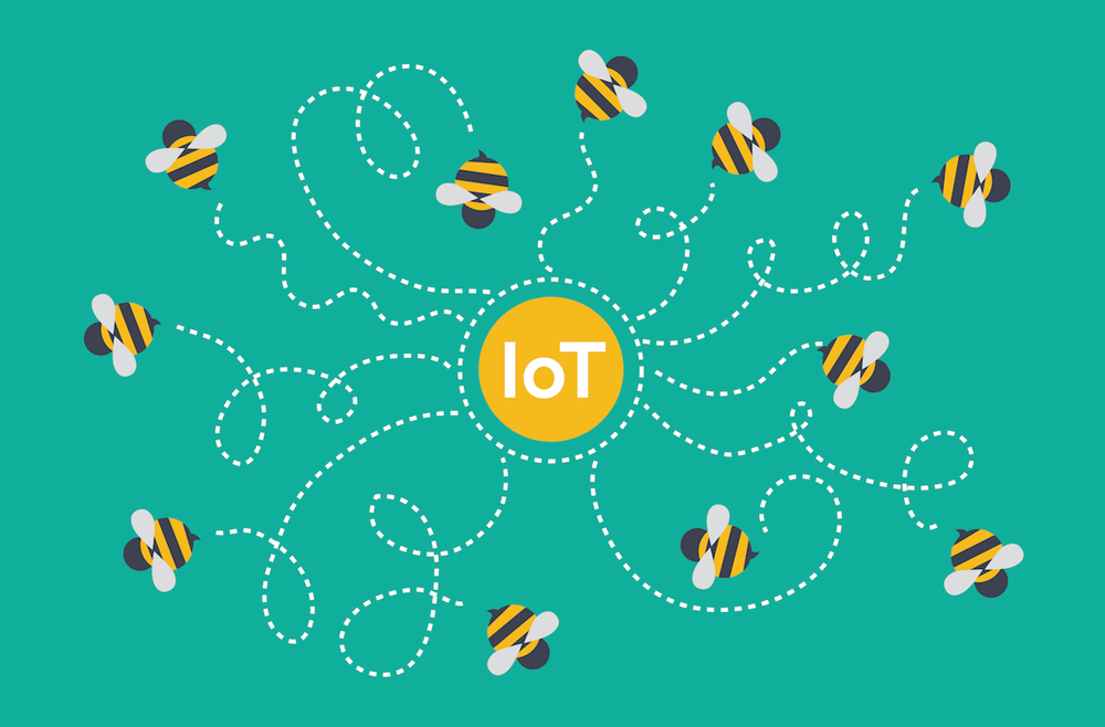 The Buzz Around the IoT