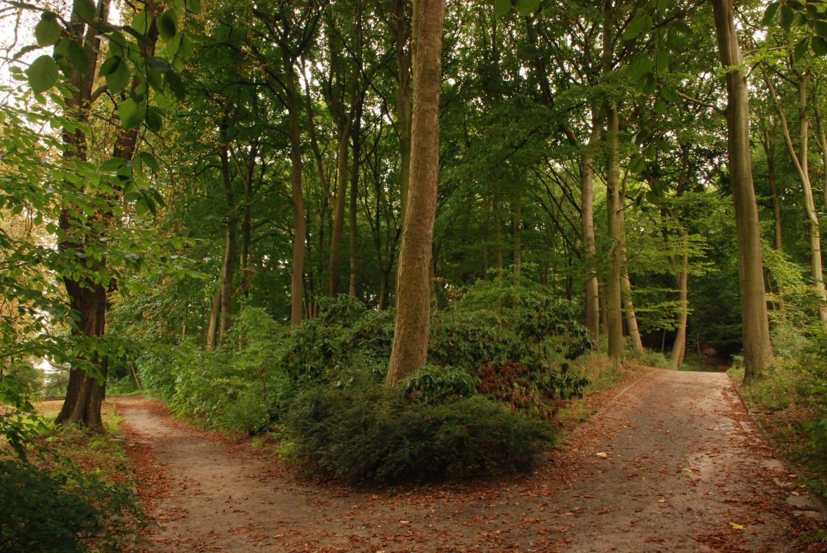 Hamburg Heimfeld Park, Quelle:shutterstock