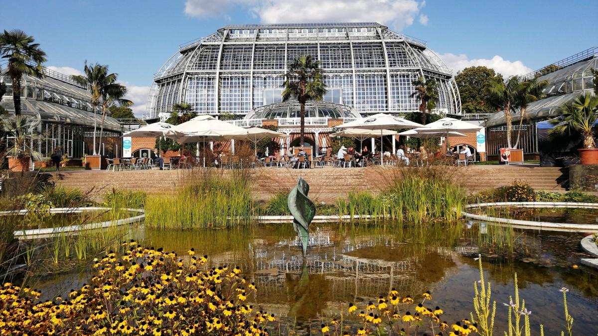 Berlin Dahlem Botanischer Garten mit Teich, Copyright: Didaktikfuchs68 auf Pixabay