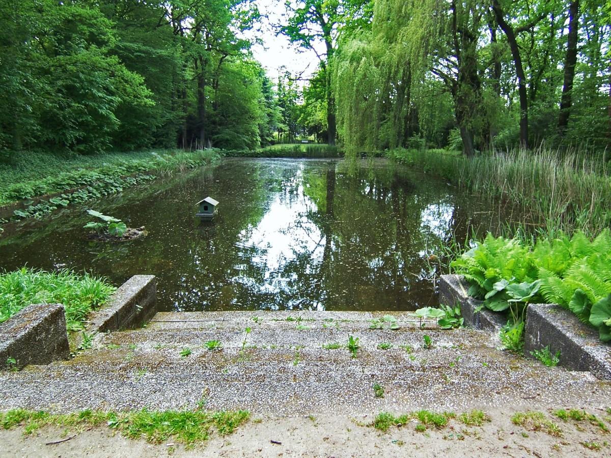 Hamburg Eidelstedt Park mit Teich, source: flickr