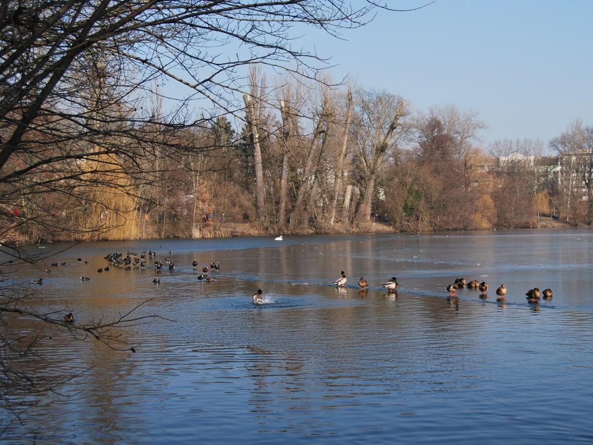 Berlin Weissensee Blick auf den See, Quelle:shutterstock