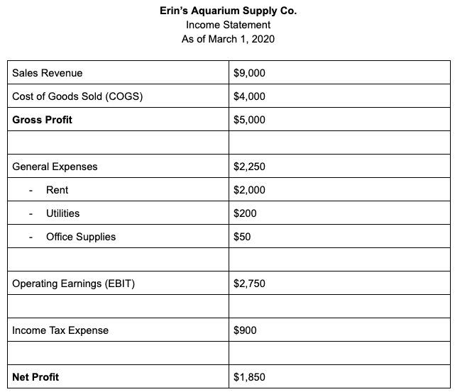 erin-aquarium-income-statement