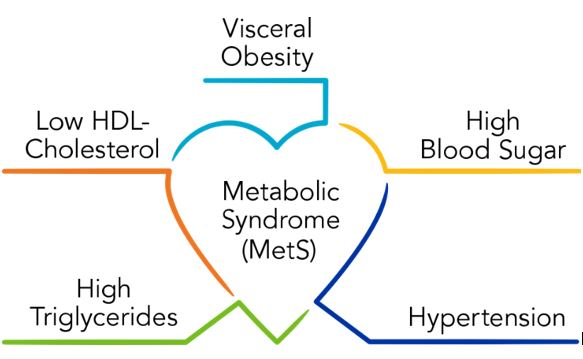 Metabolic Syndrome (MetS) in the middle of a heart with the following words coming out of it; Visceral Obesity, Hight Blood Sugar, Hypertension, High Triglycerides, Low HDL- Chloesterol.