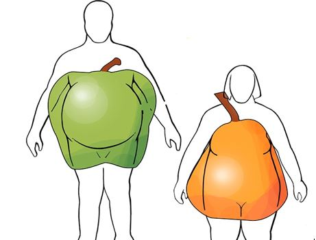 An image of a body with an apple over it and another body with a pear over it.