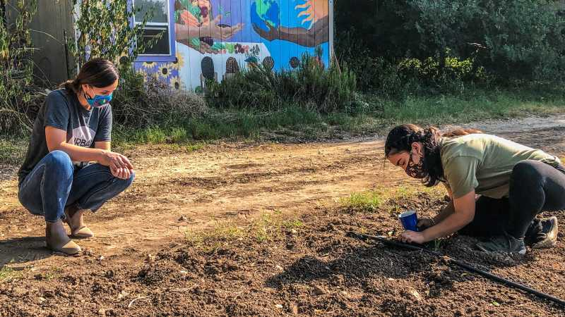 Planting The Seed: Urban Roots Farm Turns Interns Into Storytellers