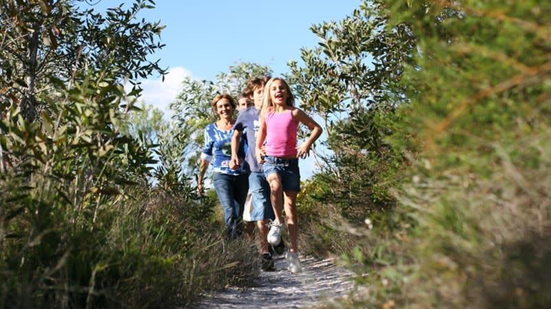 Currimundi Lake walking trails.