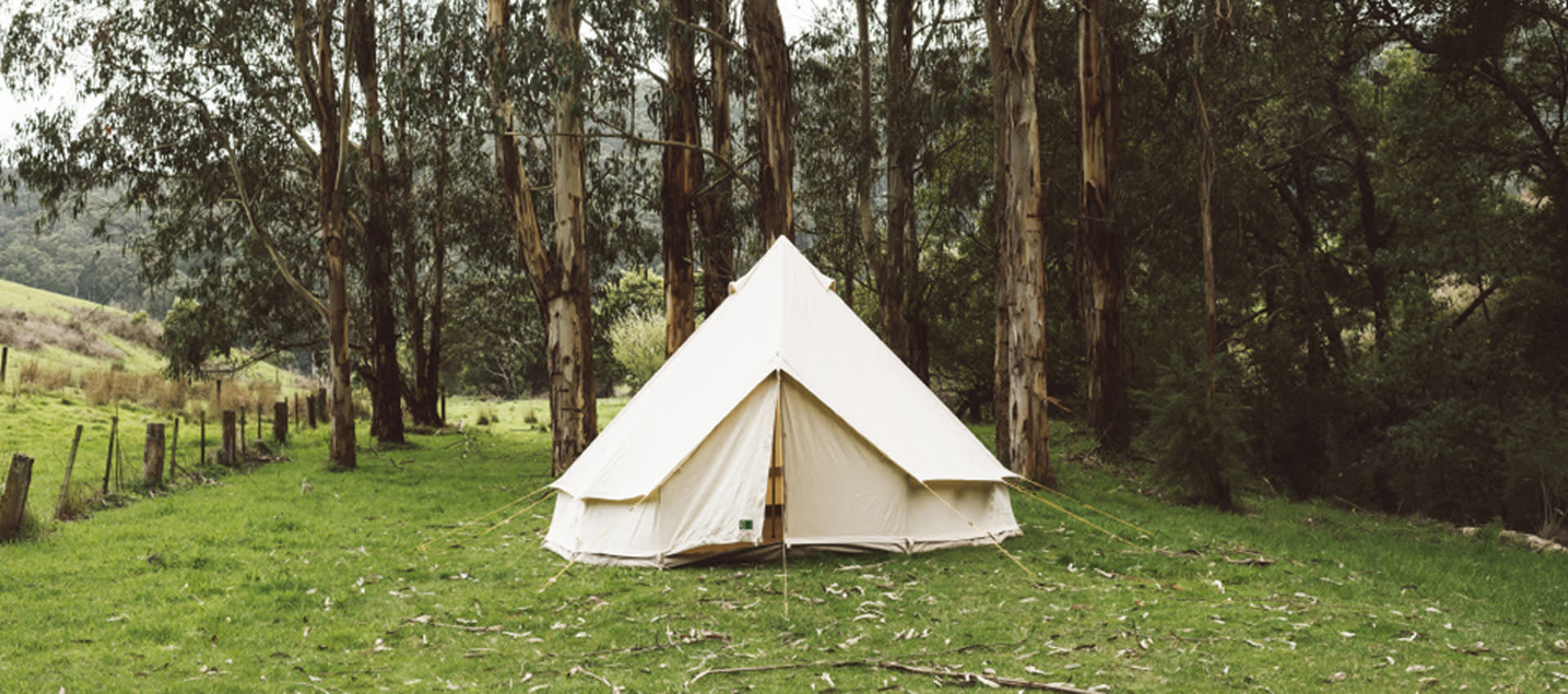 The Sunshine Coast's 8 best camping spots for camping rookies