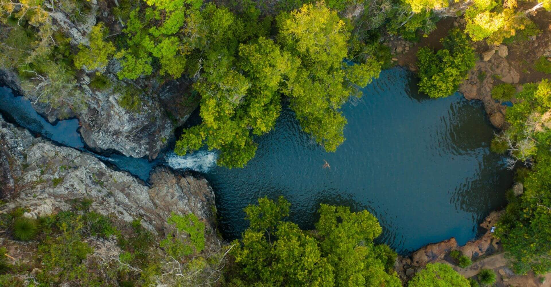 Above image: Kondalilla Falls