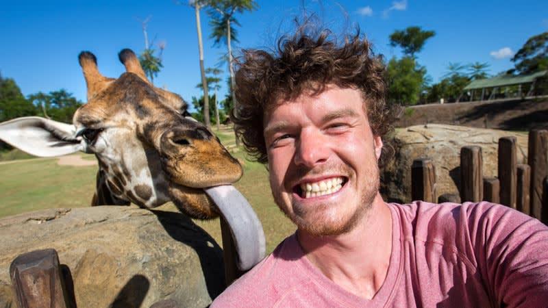Allan Dixon's six epic Sunshine Coast animal encounters
