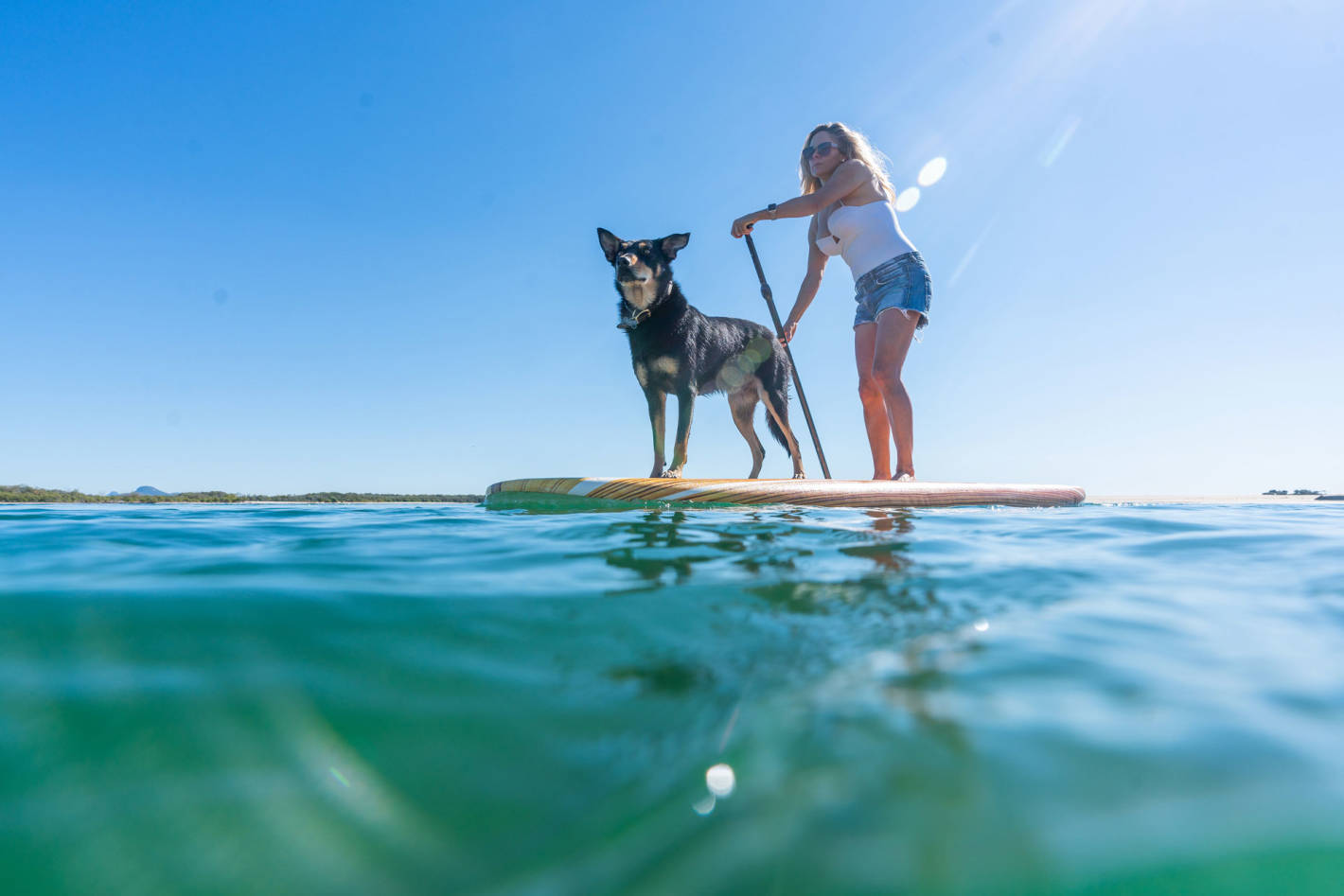 SUP, Dive & Snorkel: Dive into the waters of the Sunshine Coast