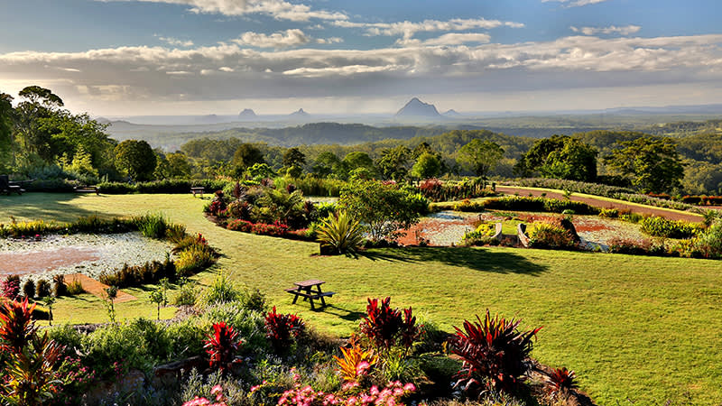 The Maleny Trail