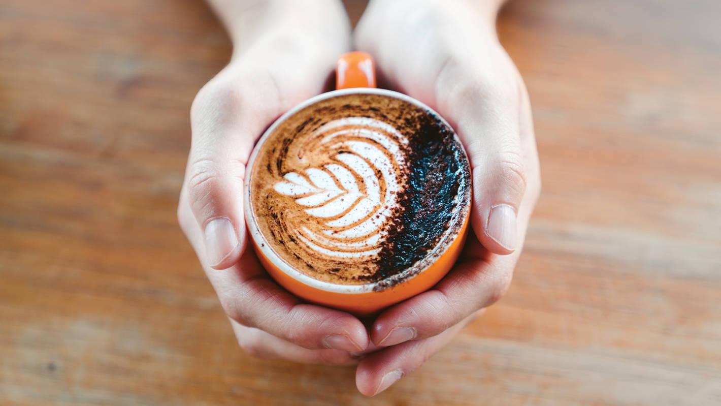 The best coffee on the Sunshine Coast