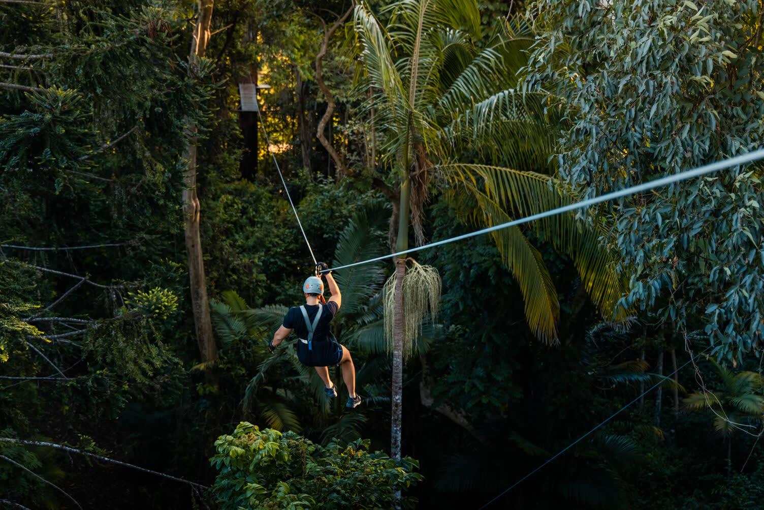 TreeTop Challenge Sunshine Coast, Woombye