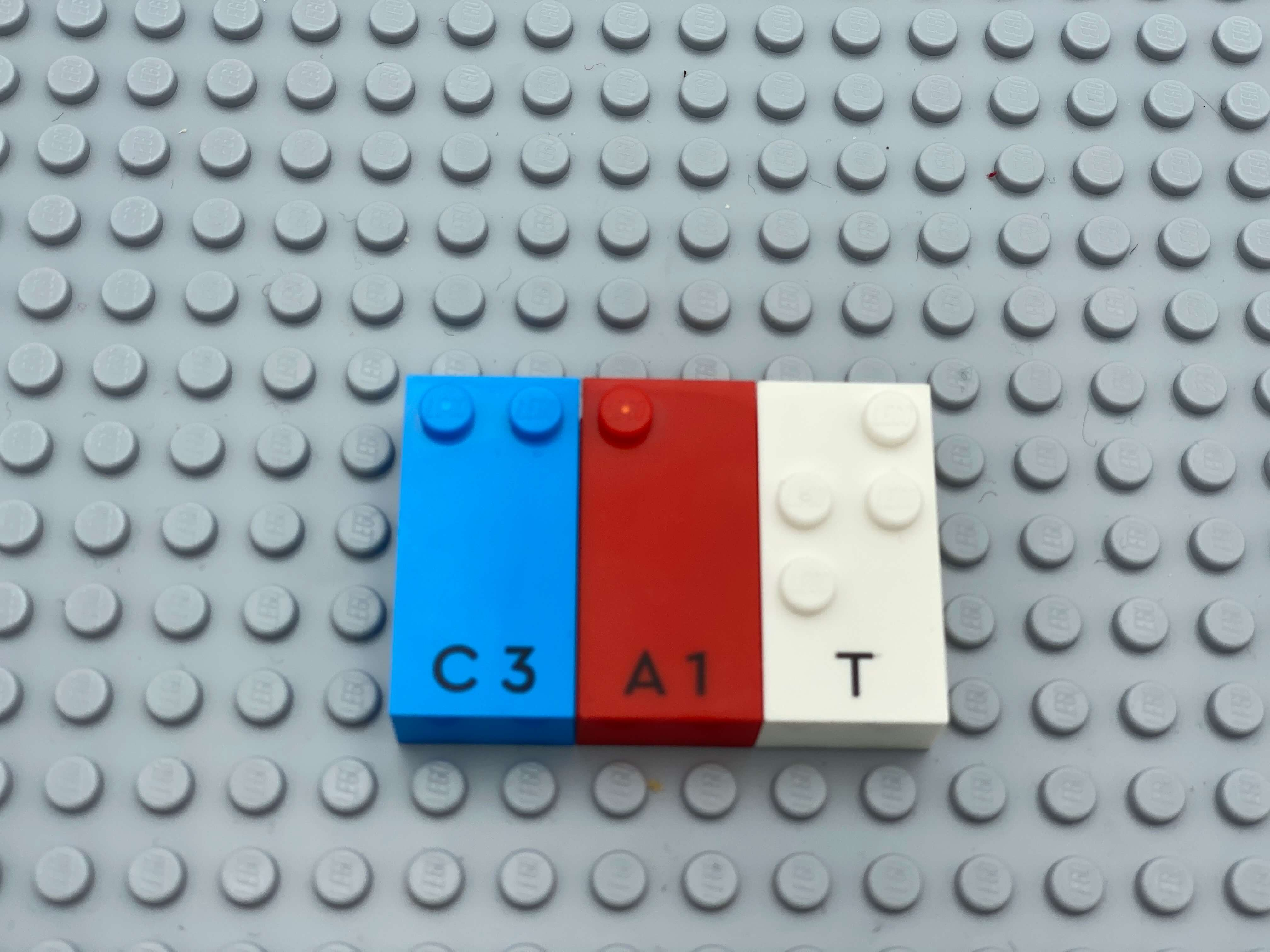 Letter bricks c, a, t (cat) aligned on the base plate.