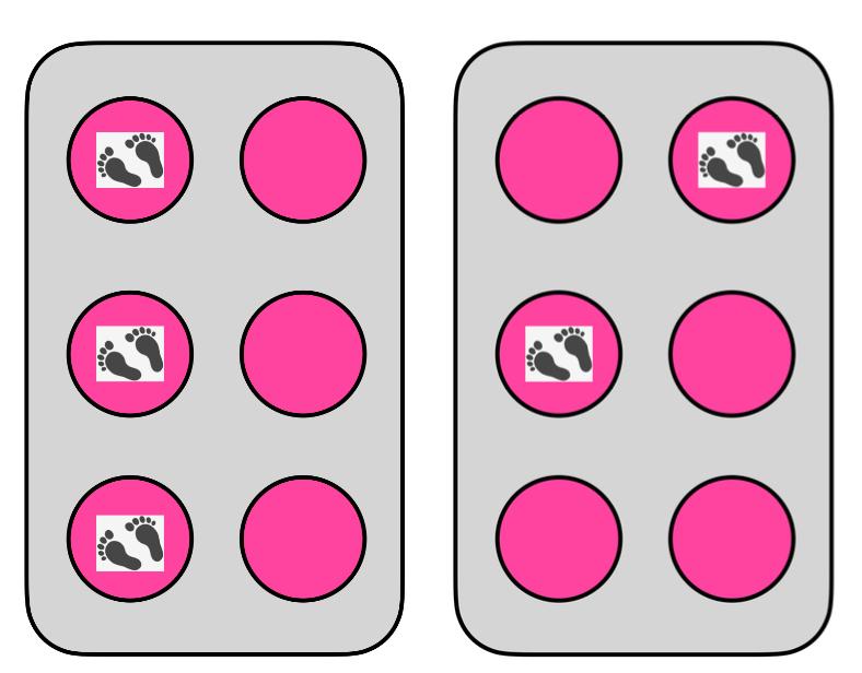 2 Hula hoop cells: l and i.