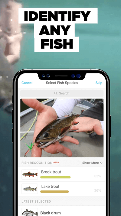 Fishbrain's Snap Ads campaign drove a 92% conversion rate on iOS, and over 60k app installs