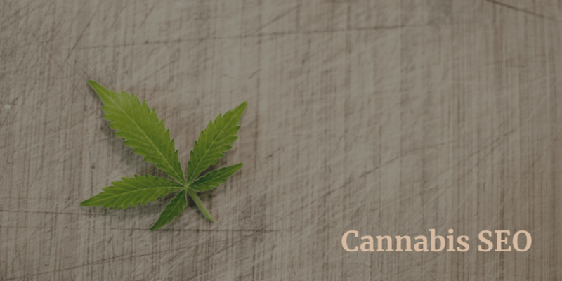 Cannabis SEO: What You Need to Know