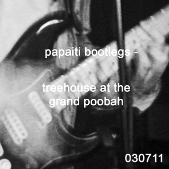 Treehouse at The Grand Poobah