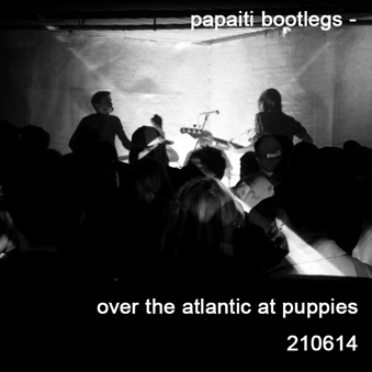 Over the Atlantic at Puppies