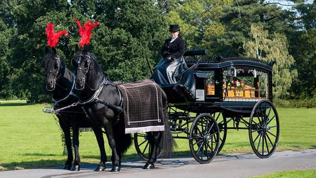 Glass horse drawn hearse with a coffin stopped in parkland with black horses and red plumes