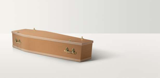 Full length image of a basic coffin with brass coloured handles and closures