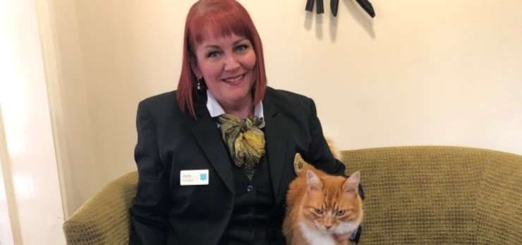 paddy the cat with carole paton