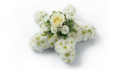 Star shaped floral arrangement with white flowers.