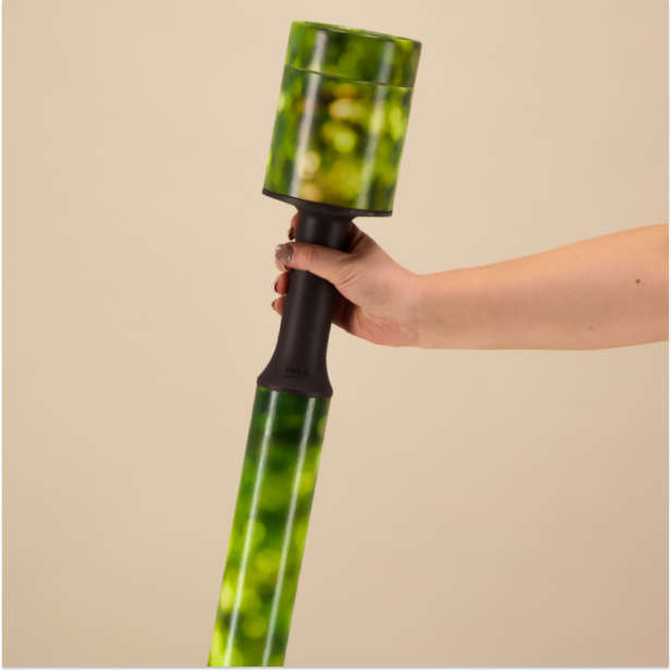 Hand holding a green walking stick