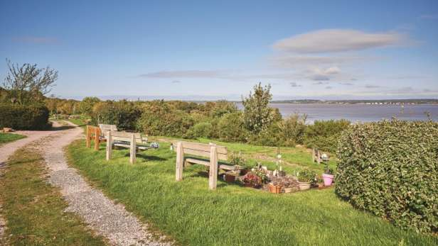 Natural woodland burial ground with benches, looking over the coast line.
