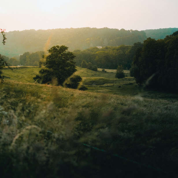 Countryside image with green hills and trees and sunlight