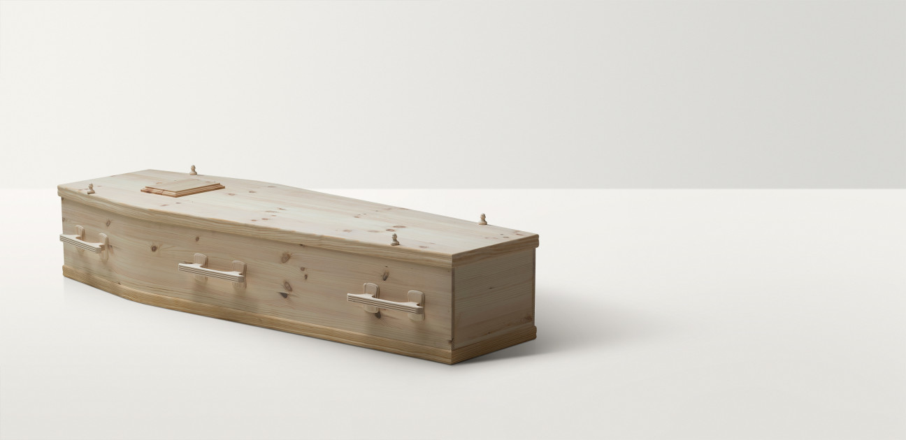 Full length image of pine coffin with pine handles and closures