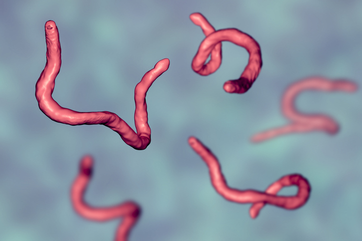 Parasite infections
