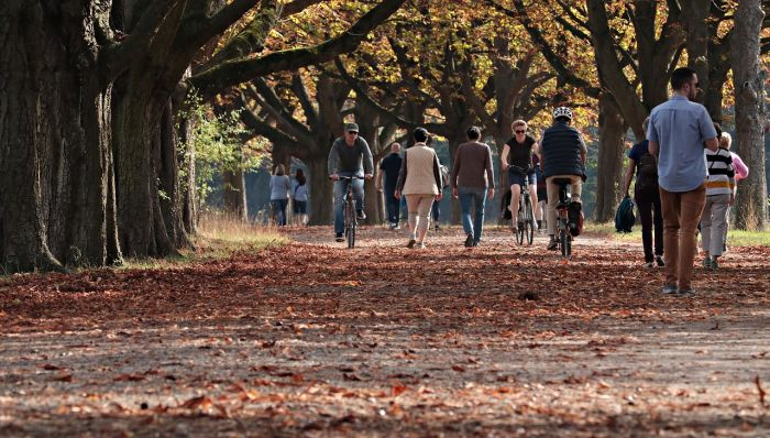 People walking and cycling in a park