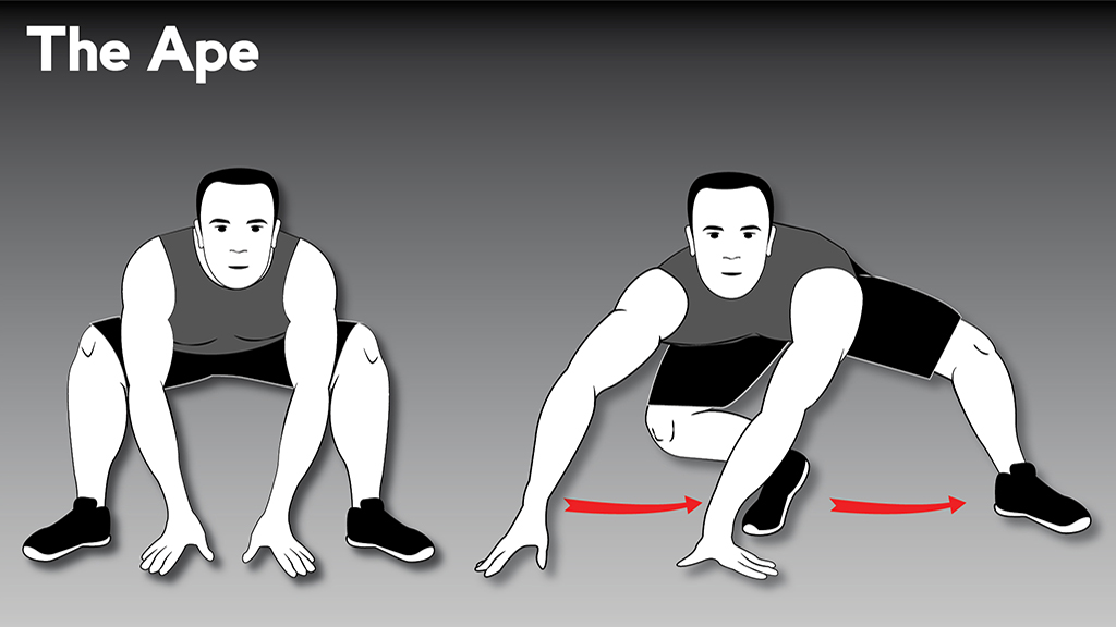 core strengthening exercises : TheApe