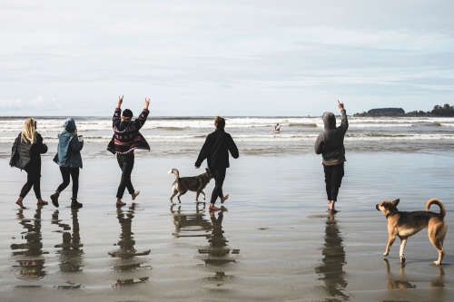 A group of five and their two dogs walk along the shore of a Tofino beach