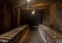 2011 Bordeaux - Vintage Report