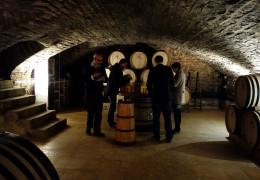 FINE+RARE: The 2013 Burgundy Report